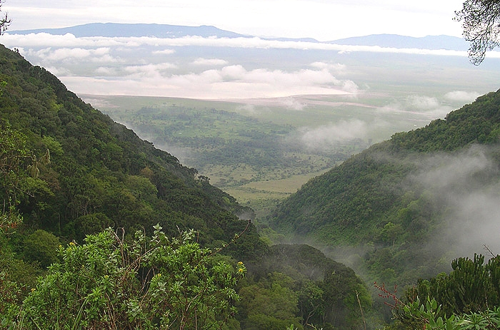Ngorongoro Crater, View from the Crater Rim